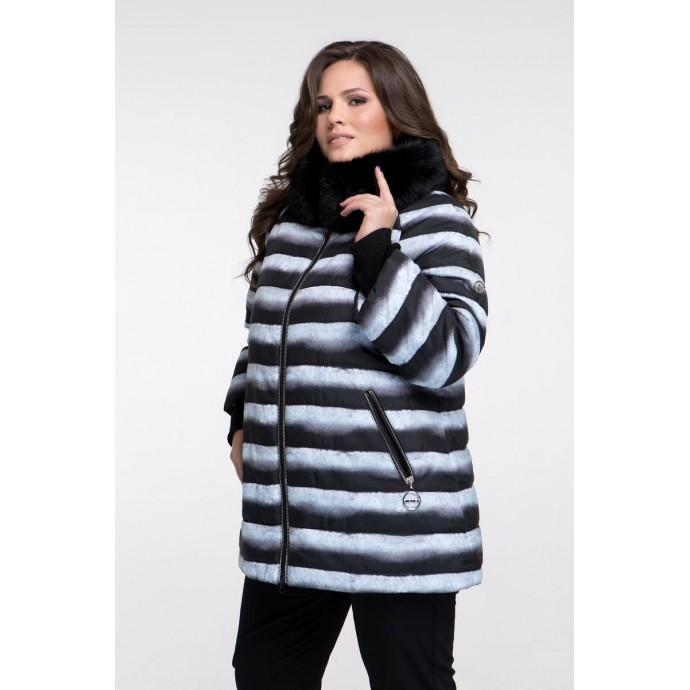Зимняя куртка принт шиншила  РК11117-669