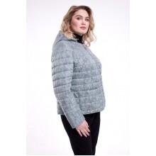 Куртка с принтом РК1185r-728