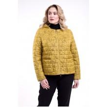 Куртка с принтом РК1186r-728