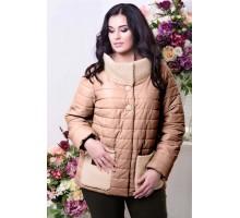 Демисезонная куртка короткая РК1130-590